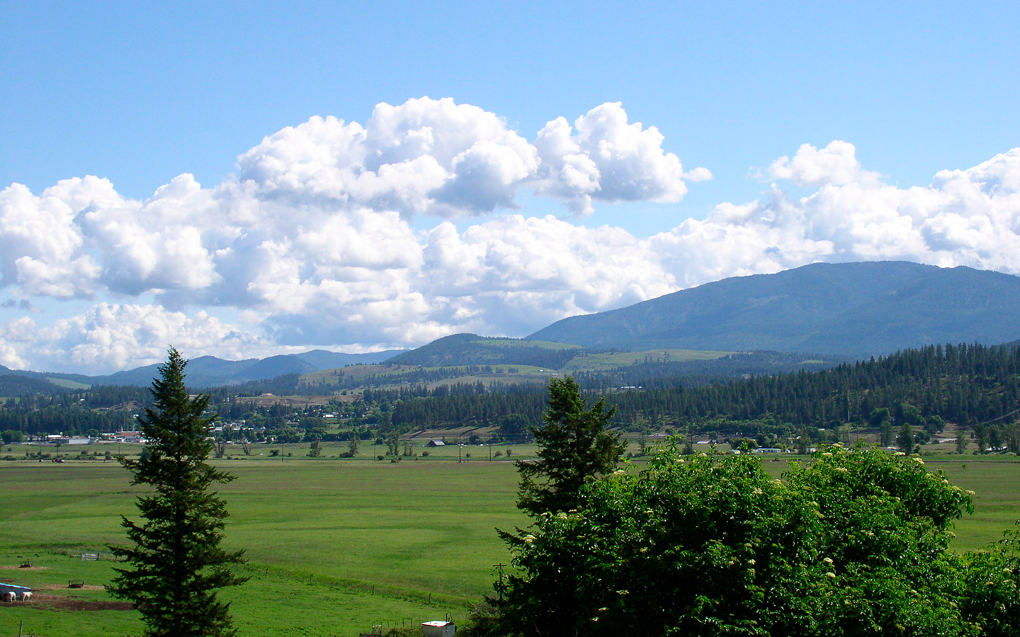 The Colville Valley in spring.